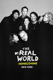 The Real World Homecoming: New York