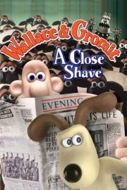 A Close Shave